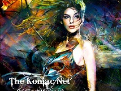 THE KONIC NET
