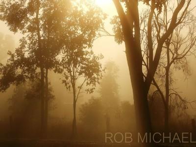 ROB MICHAELS